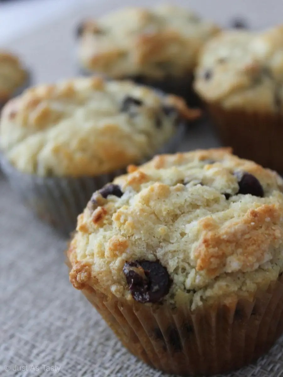 Close-up of chocolate chip muffin