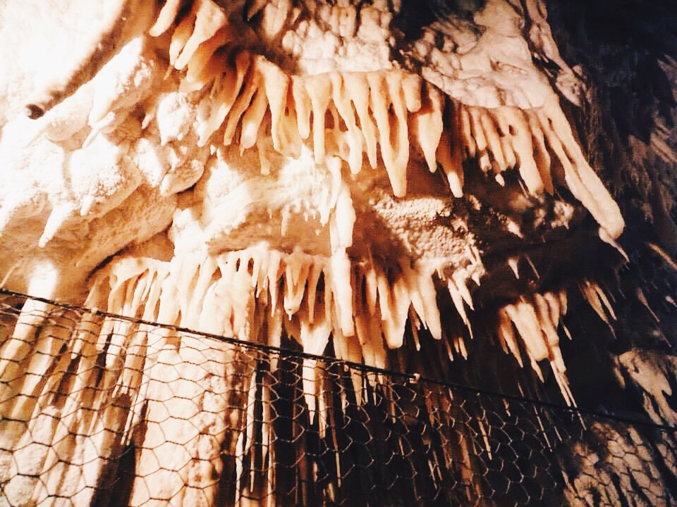 The ceiling in the Aranui cave