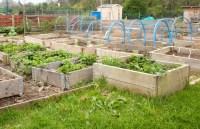 Herb Garden Planter Box Ideas | Garden Design Ideas