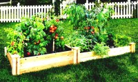 Easy Patio Vegetable Garden | Garden Design Ideas