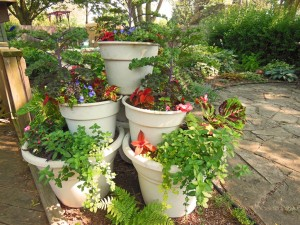 Container Vegetable Garden Ideas squash in pots Container Vegetable Garden Ideas The Gardening Container Vegetable