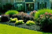 Simple Landscape Designs For Backyards | Garden Design Ideas