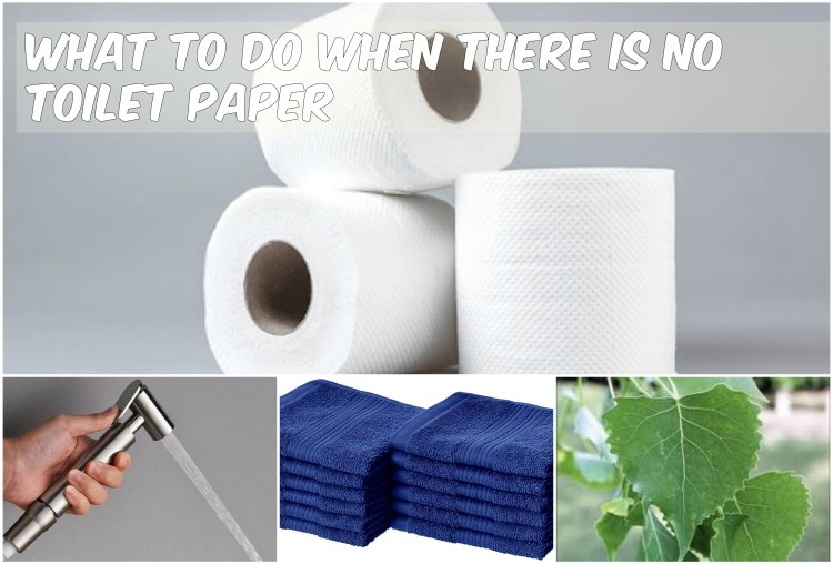 what to do when there is no toilet paper