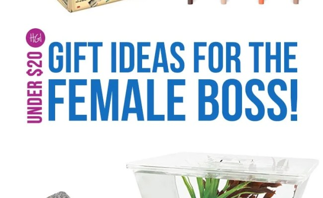 Funky Gift Ideas For A Female Boss For Under 20 Just