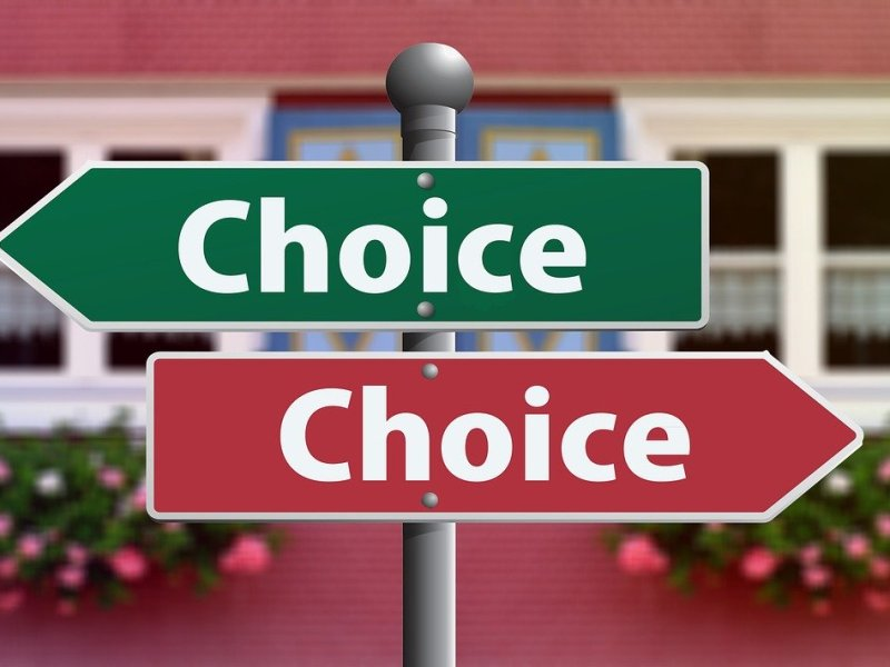 "two signs with the words ""choice"" pointing opposite directions"