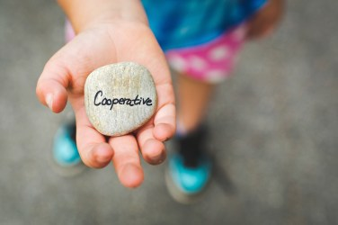cooperative stone in child's hand