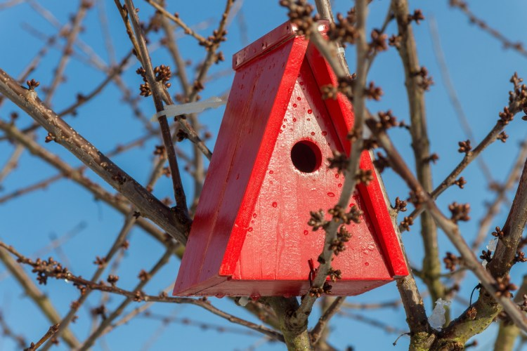 a red birdhouse in the trees