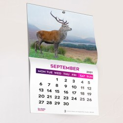 Wall hanging Calendar