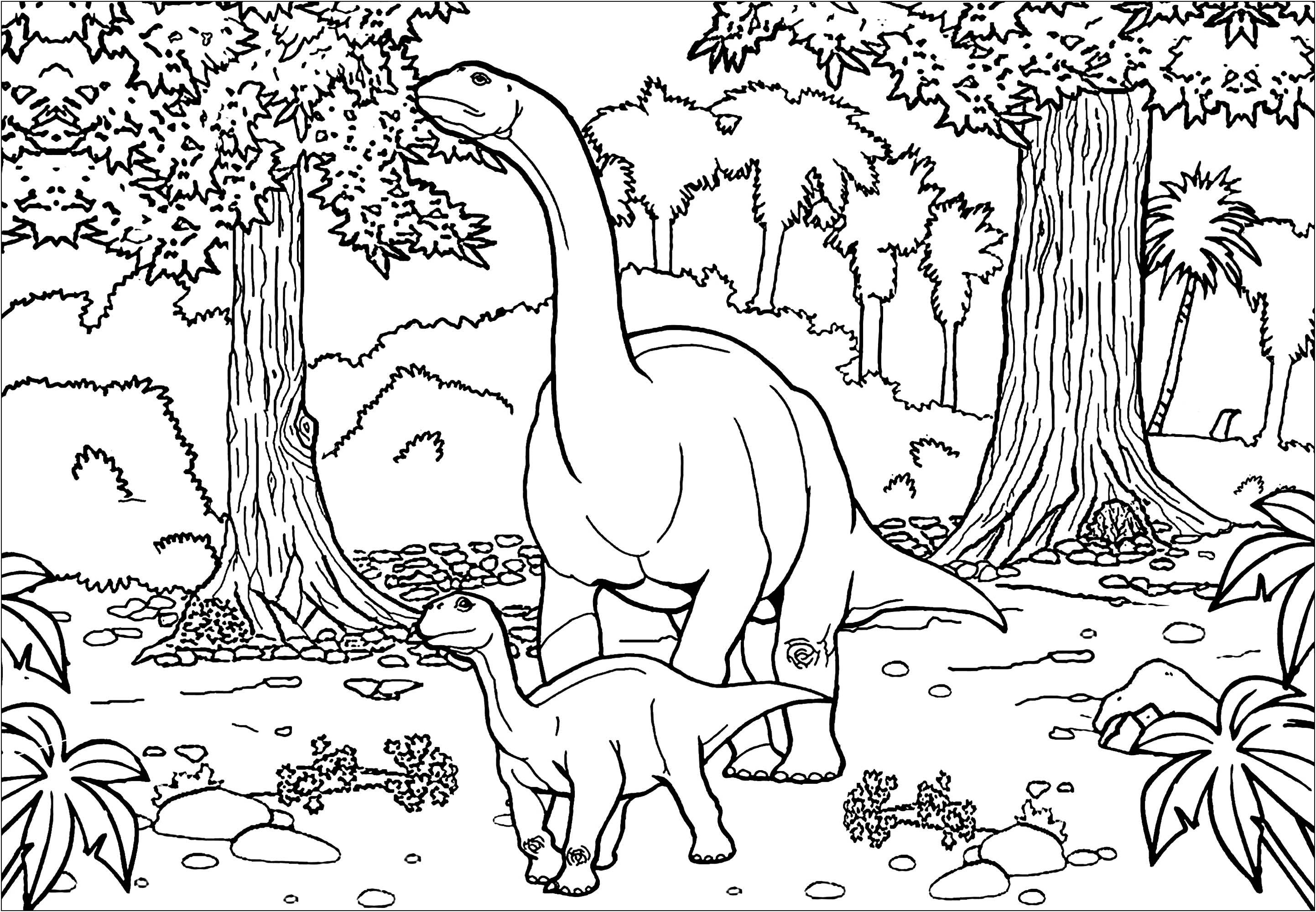 Infantil Dibujo De Dinosaurio Para Pintar Novocom Top Escoge el color y después la zona que quieres pintar con ese color. infantil dibujo de dinosaurio para