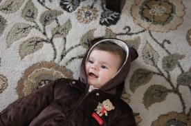 Baby bear Olive