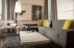 Grey couch with yellow accents