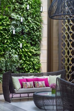 A plant wall and unique lattice is a great wall to add style and privacy