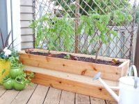 Planting for Privacy  DIY Wood Planter | just decorate!