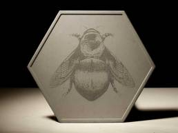bee on tray