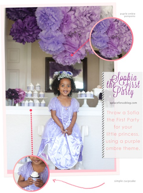 Disney Sofia the First Birthday Party Theme