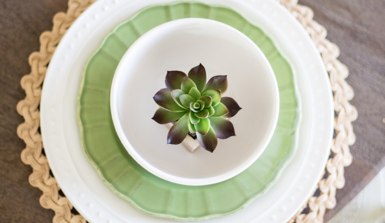 Simple and Affordable Earthenware Dishes