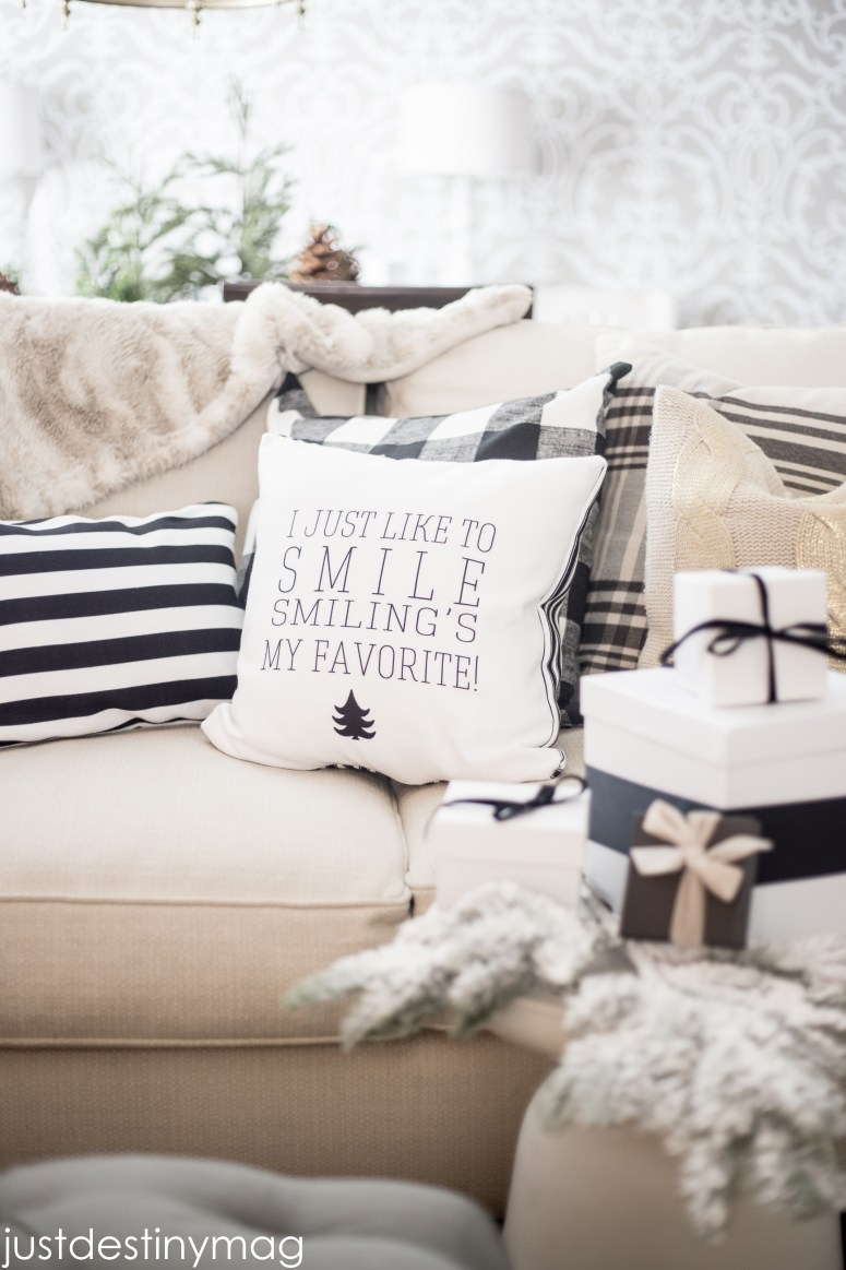 Shutterfly Pillows and Home Decor-10
