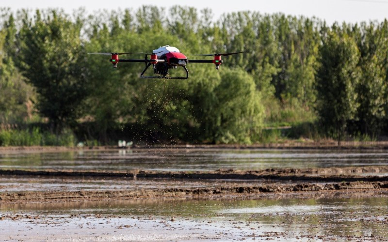 The XAG Drone JetSeed Module conducts direct seeding over a rice paddy.