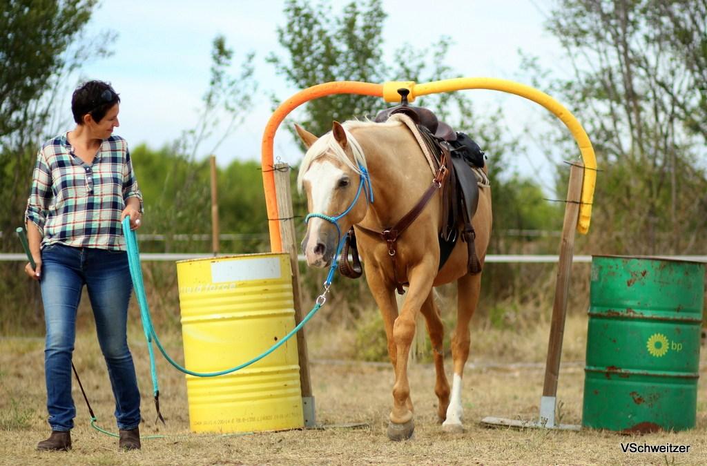 Rendre son cheval plus courageux