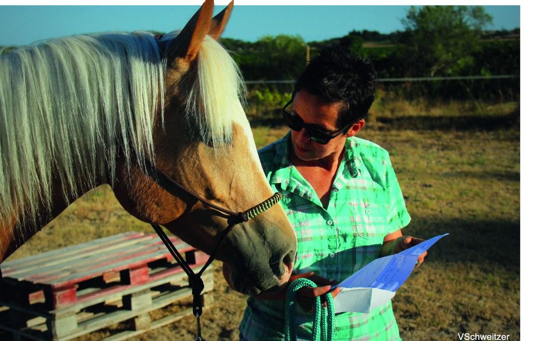 Laissez le cheval apprendre !