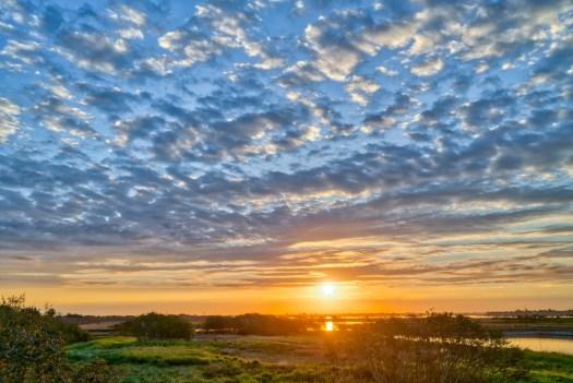 Another Backyard Sunrise