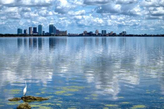 I drove around Tampa one hot day looking for photos to take and this is one I found on Bayshore Boulevard. I'm standing here at one of the many vistas that are provided for viewing the city which is located at the far edge of Tampa Bay so that the water is usually calm and glassy. Bayshore has many large homes with this same commanding view of the downtown Tampa core. I got lucky because these puffy clouds were also present to add to the composition. This time of year we get these hanging in the air which makes for an interesting sky when you catch them in the first half of the day. Normally by the afternoon or evening they either dissipate or group together and form thunderstorms.