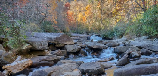 """Its now autumn in the northern hemisphere but I've not yet gotten out for some fall pictures. Nevertheless I took this about a year ago in Gorges State Park North Carolina. This is in the Blue Ridge Mountains and I think it's one of the best places to go for fall colors. I was hiking up stream along a trail towards a much larger waterfall. The trail was short but strenuous and so I kept leaving the trail to look upstream towards the big waterfalls that would mean I was finally there. It was almost as if I had a voice in my head saying """"are we there yet?"""" over and over again. When I finally did reach the falls it felt like the effort was well worth it."""