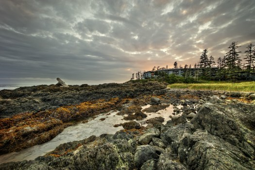 This is Black Rock Hotel in the town of Ucluelet where I recently stayed. It's on the west coast of Vancouver Island in British Columbia. The shoreline couldn't be more different than that of Florida, yet the contrast was something I very much appreciated. The coast is rugged, yet punctuated with long beaches frequented by surfers, and while the waves aren't huge, they're respectable even on calm days. I loved walking along trails here and exploring tide pools and just listening to the sound of the ocean on the rocks. Food for the soul indeed.