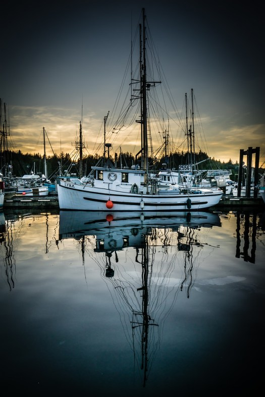 This is taken from the harbour in Ucluelet, British Columbia. This was the scene one evening as we sat outside at a little floating restaurant while the sun lowered below the horizon. A nice place to sit and relax after a long day of sightseeing and whale watching. A good many of the town residents are commercial fishermen and these boats come and go all times of the day and night. Aside from the natural beauty, sport fishing is probably the biggest attraction in Ucluelet. I think this is one of those places fishermen must read about in magazines and then one day make it here to catch their hearts content. On a related note, I passed up fish and had the ribs. Not that I don't like fish, maybe being surrounded by so much fish I had the urge for something different.