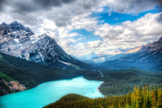 Off the highway near Banff is a lookout above Peyto Lake and any of you who have been here in summer know why I titled this shot