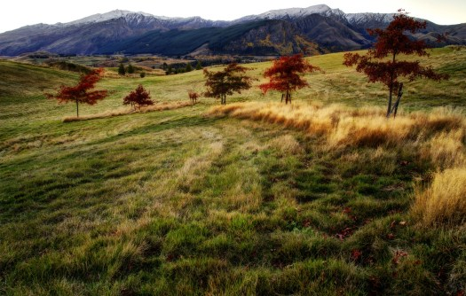This is in in a beautiful valley near Queenstown in New Zealand. I took this in New Zealand's fall so all the trees were various shades of the rainbow. The word