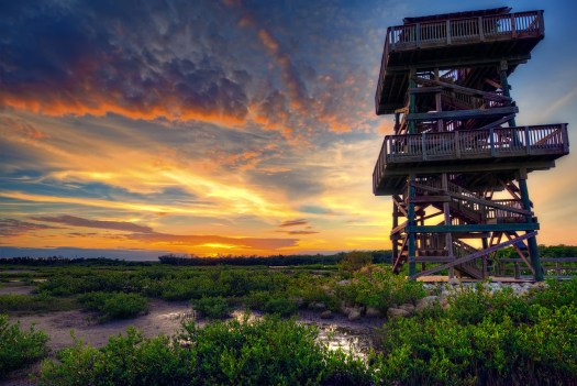 This is the lookout tower at Robinson Preserve in Bradenton. Actually, most natural preserves in my area have lookout towers because its so flat you need some way to see above the scrub and trees. Any place that has mountains, or even hills, would have no use for these because if you want a vista you just walk to the top of the nearest hill. As I write this I'm on the south island of New Zealand and I've not seen a single tower like this. What I have seen are plenty of hills and mountains. Two different worlds entirely.