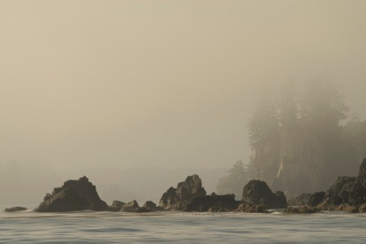 I couldn't get enough of the fog when I visited Ucluelet earlier in the year. However I doubt the mariners felt the same way, just makes everything more difficult all around. The fog horns, the buoy bells and what must be frayed nerves as the boats head to harbour. But I don't normally think about all that when I eat seafood. In any case, the cloak of mystery that is added to the landscape is unlike anything. It's no wonder they call it Super Natural British Columbia.