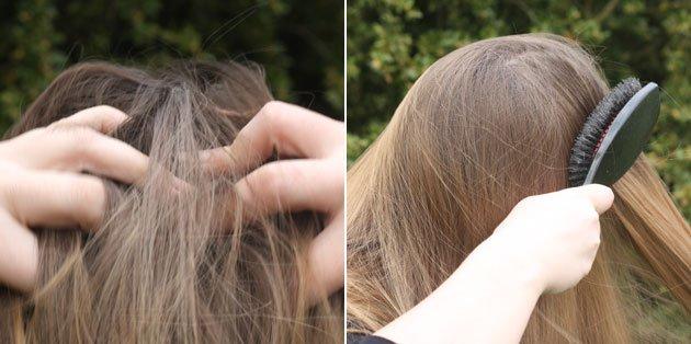 brosse a poils