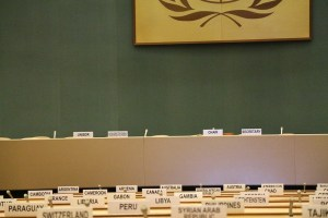 Is the UN Human Rights Council delivering on its mandate to mainstream human rights?