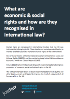 What are economic and social rights - first page screenshot