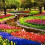 Interesting Facts About Keukenhof Gardens Just Fun Facts