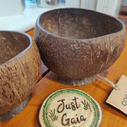 Best Coconut Bowl