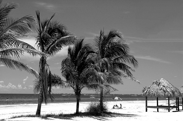 BNA > Fort Myers, Florida: $52 round-trip- Dec-Feb [SOLD OUT]