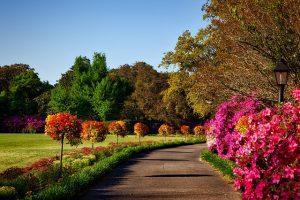 IND> Birmingham, Alabama: $171 round-trip – Nov-Jan
