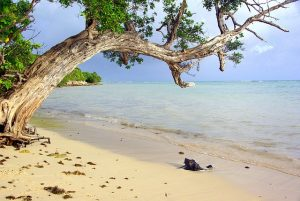 IND> Pointe-a-Pitre, Guadeloupe: Flight & 7 nights: $727 – Dec-Feb