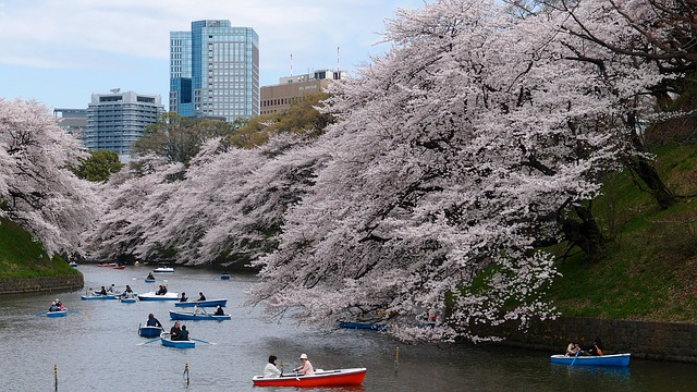 LAX > Tokyo, Japan: Flight & 9 nights: $706- Mar-May