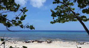 JFK> Cayman Brac, Cayman Islands: Flight & 5 nights: $883 – Aug-Oct