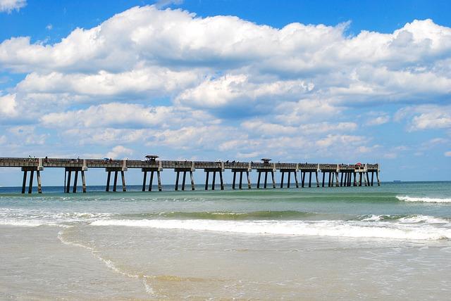 JFK > Jacksonville, Florida: $117 round-trip- Aug-Oct