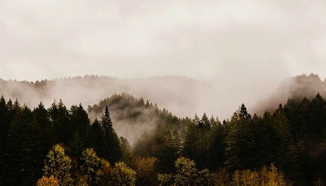 OAK > Eugene, Oregon: $95 round-trip- Mar-May