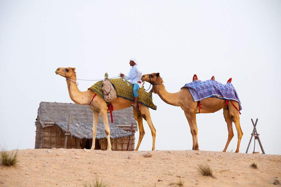 MSP> Dubai, United Arab Emirates: Flight & 7 nights: $1,032 – Dec-Feb