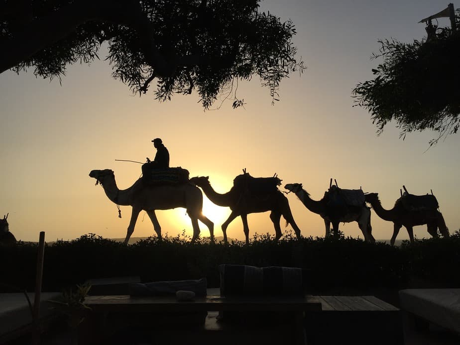 IND> Casablanca, Morocco: Flight & 14 nights: $1,128- Aug-Oct (Including Fourth of July)