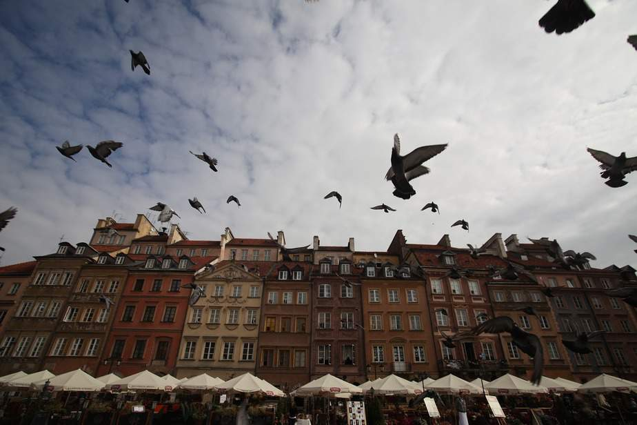 IND> Warsaw, Poland: Flight & 7 nights: $620