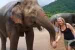bucket list olifanten verzorgen