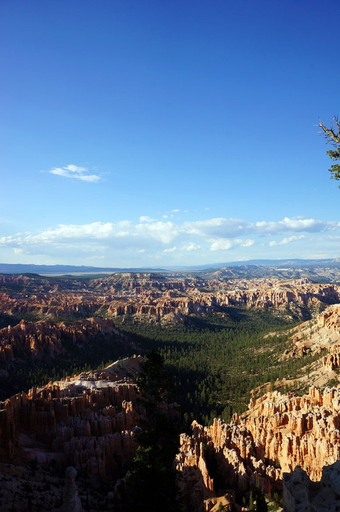 USA Roadtrip Bryce Canyon